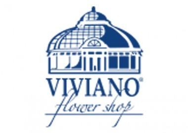 VivanoLogo